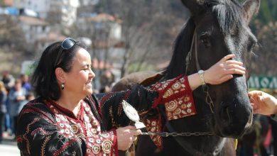 صورة تنظيم مهرجان الخيل السنوي تحت رعاية سفارة المملكة المغربية بصوفيا
