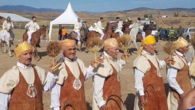 "Photo of مهرجان ""ماطا"" للفروسية بأربعاء عياشة ينطلق في جو احتفالي متميز."