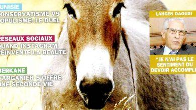 """صورة لأول مرة في مجلة مغربية  الحمار موضوع غلاف مجلة «BAB"""" الشهرية"""