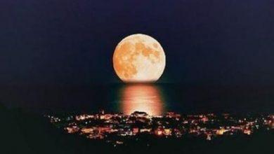 Photo of قصيدة بالعامية المصرية الم الليل للشاعر المصري عماد حمدي