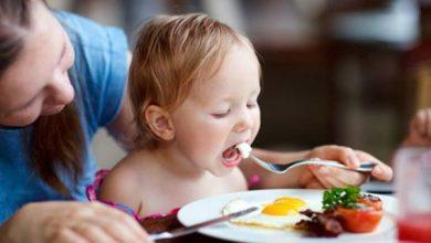 صورة فوائد البيض للأطفال