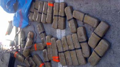 صورة ميناء طنجة المتوسط.. إحباط محاولة لتهريب 450 كلغ من مخدر الشيرا
