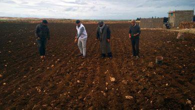 """صورة اكت فور كومينوتي يدعم زراعة """"الكينوا"""" بالرحامنة واليوسفية"""