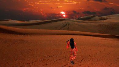 صورة قصيدة يا رحلة في مدى النسيّان موجعةً للشاعرة : آمال خاطر